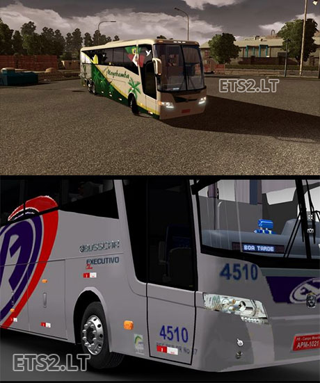 new-bus