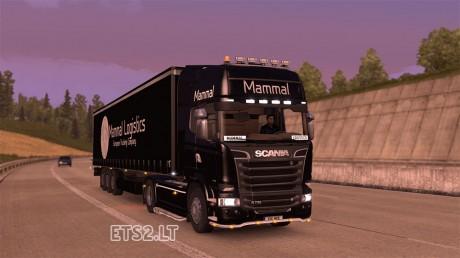 mammal-combo-2