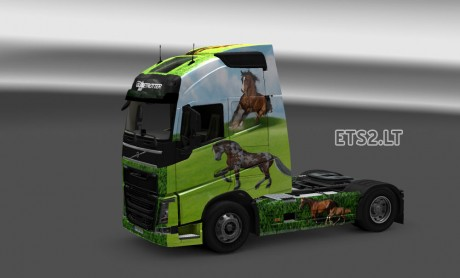 horse-skin-2