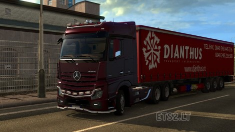 Dianthus Transport-1