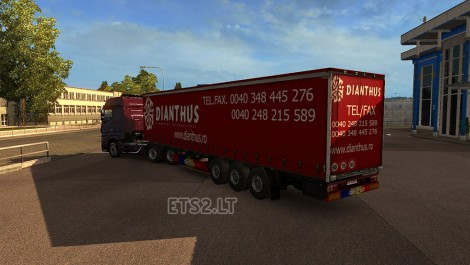 Dianthus Transport-3
