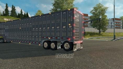 Wilson-Livestock-3