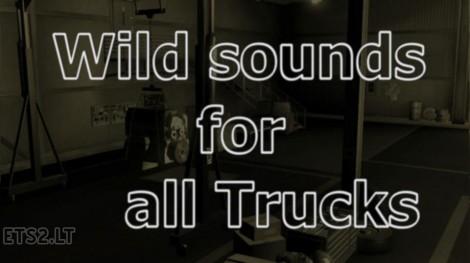 wild-sound