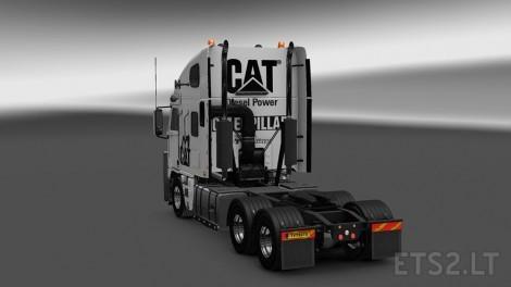 Cat-Argosy-White-2
