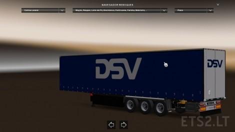 DSV-1