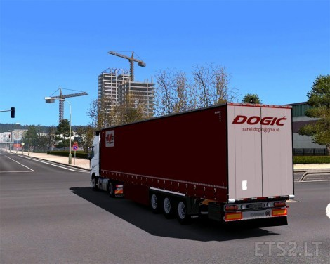 dogic-2