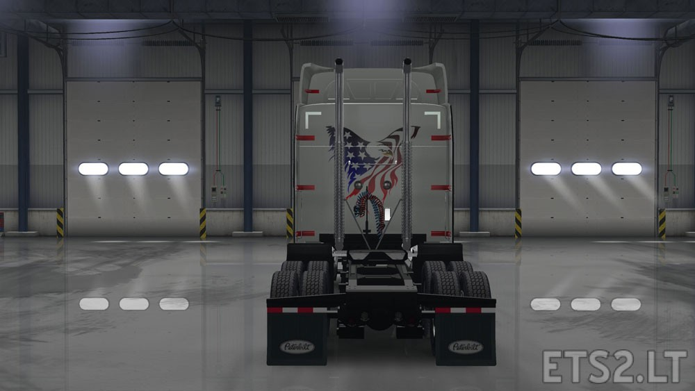 American-Eagle-2