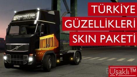 Turkey-Beauties-Paintjob