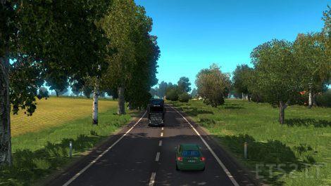 summer-environment-3