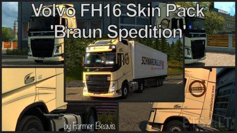 braun-spedition-1