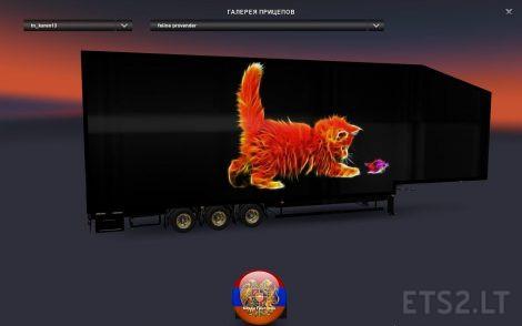 burning-kitty